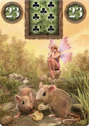 Мыши и Птицы