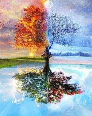 Зеркало четырех стихий